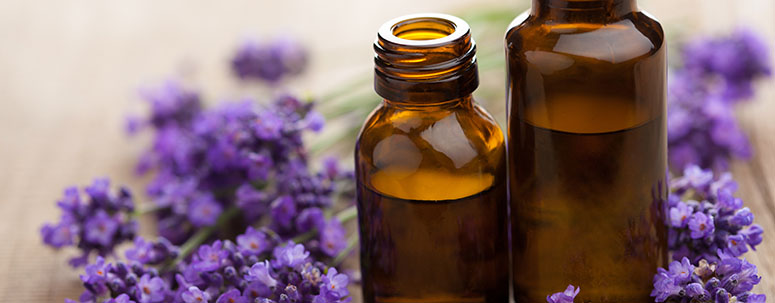 aromatherapy_head_banner